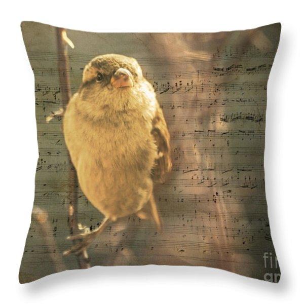 Whistling Song Sparrow Throw Pillow by Janice Rae Pariza