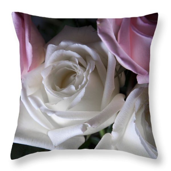 White And Pink Roses Throw Pillow by Jennifer Lyon