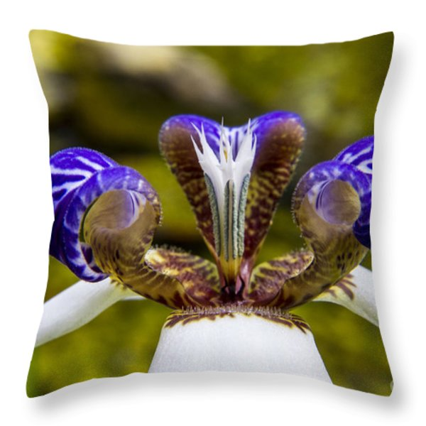 White And Purple Orchid Macro Throw Pillow by Darleen Stry