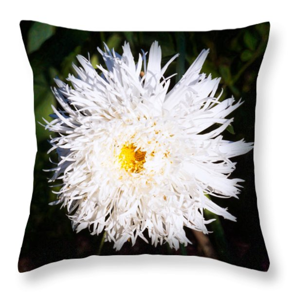 White Beauty Throw Pillow by Omaste Witkowski
