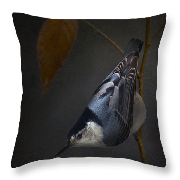 White Breasted Nuthatch Throw Pillow by Ron Jones