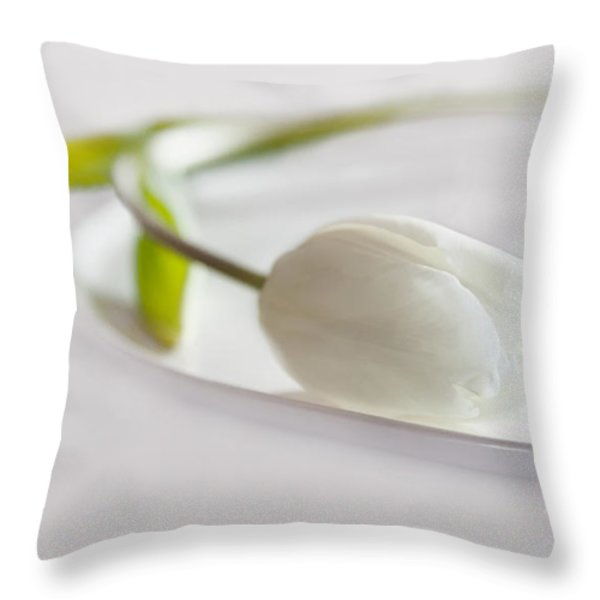 White Throw Pillow by Claudia Moeckel