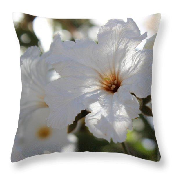 White Cordia Throw Pillow by Kume Bryant
