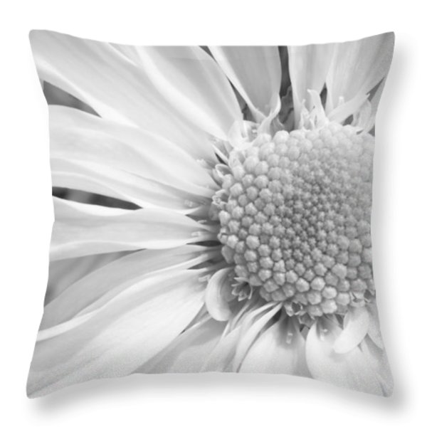 White Daisy Throw Pillow by Adam Romanowicz