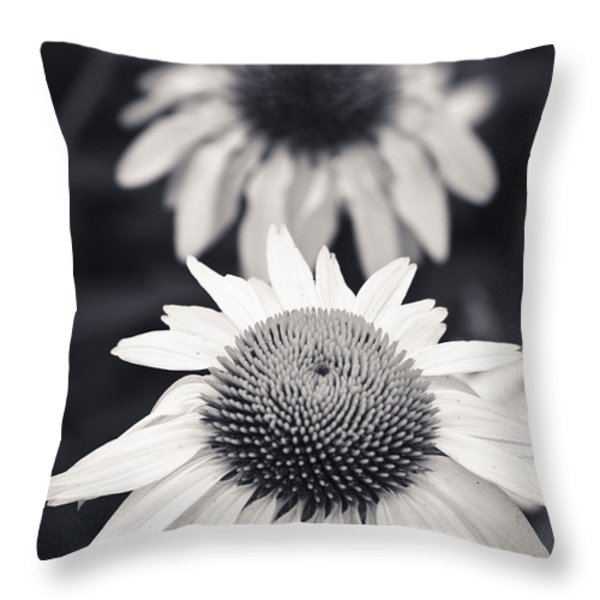 White Echinacea Flower or Coneflower Throw Pillow by Adam Romanowicz