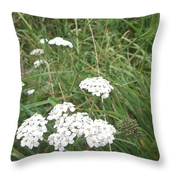 White Flowers Throw Pillow by John Williams