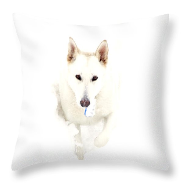 White German Shepherd In Snow Throw Pillow by Thomas R Fletcher
