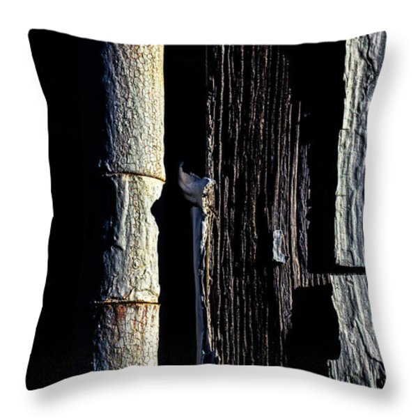 White Hinge On The Old Red Barn Throw Pillow by Bob Orsillo