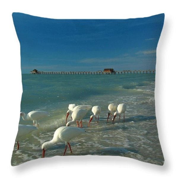 White Ibis near Historic Naples Pier Throw Pillow by Juergen Roth