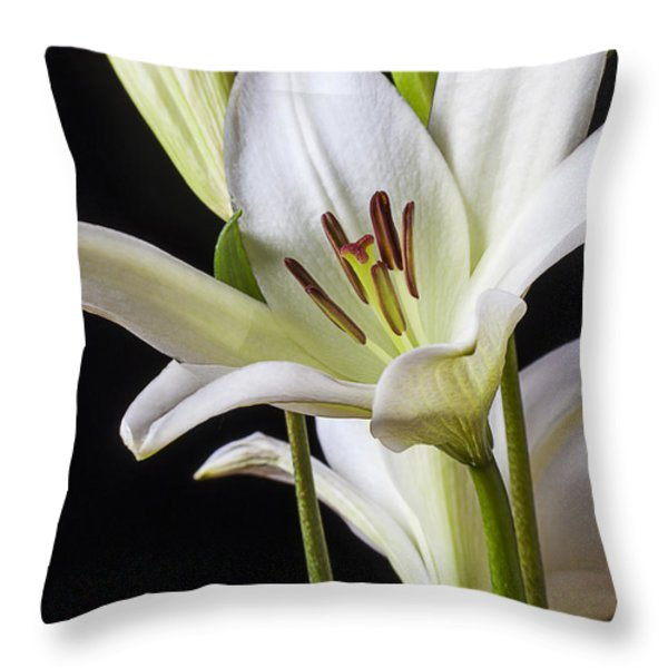 White Lily Throw Pillow by Garry Gay