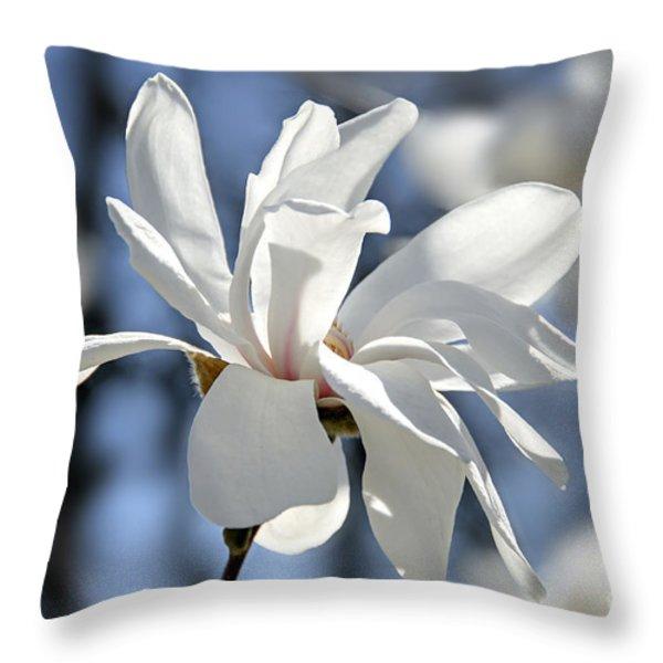 White Magnolia  Throw Pillow by Elena Elisseeva