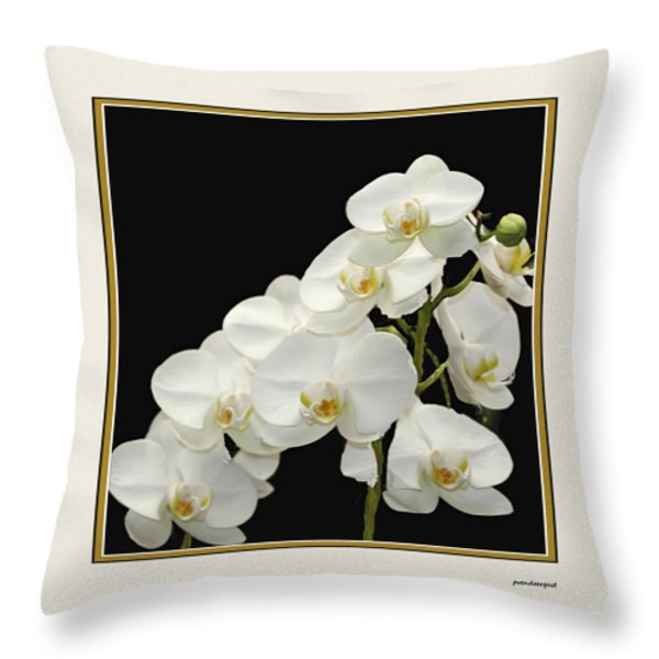 White Orchids II Throw Pillow by Tom Prendergast