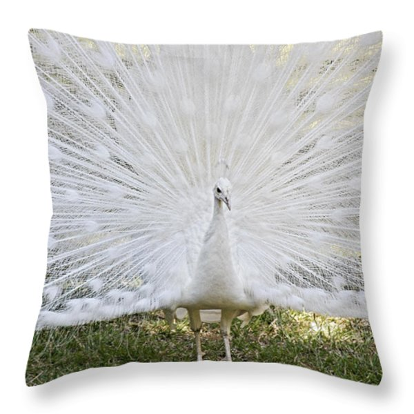 White Peacock - Fountain Of Youth Throw Pillow by Christine Till