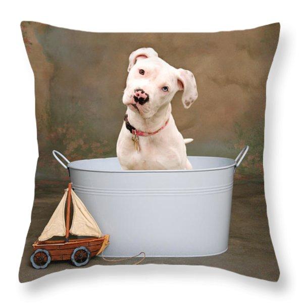 White Pitbull Puppy Portrait Throw Pillow by James BO  Insogna