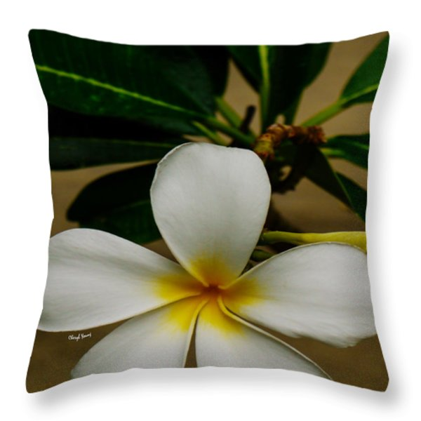 White Plumeria 2 Throw Pillow by Cheryl Young