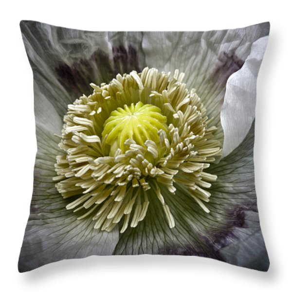 White Poppy Throw Pillow by Frank Tschakert