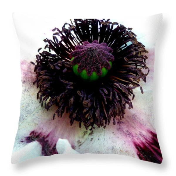 White Poppy Macro Throw Pillow by The Creative Minds Art and Photography