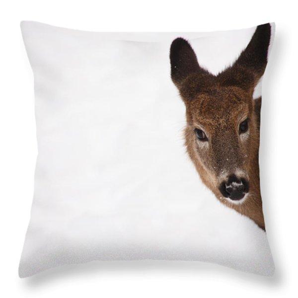 White Tail Babe Throw Pillow by Karol Livote