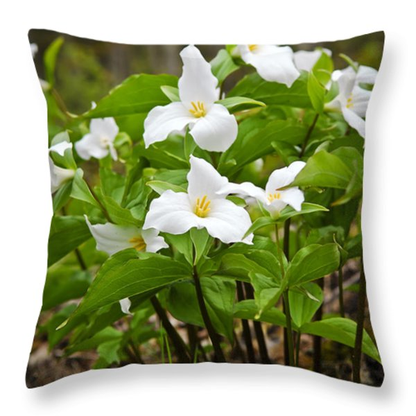 White Trillium Throw Pillow by Elena Elisseeva