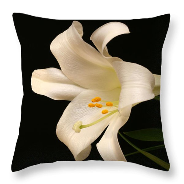 White Trumpet Throw Pillow by Doug Norkum