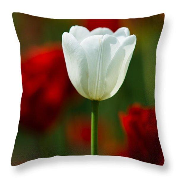 White Tulip - Featured 3 Throw Pillow by Alexander Senin