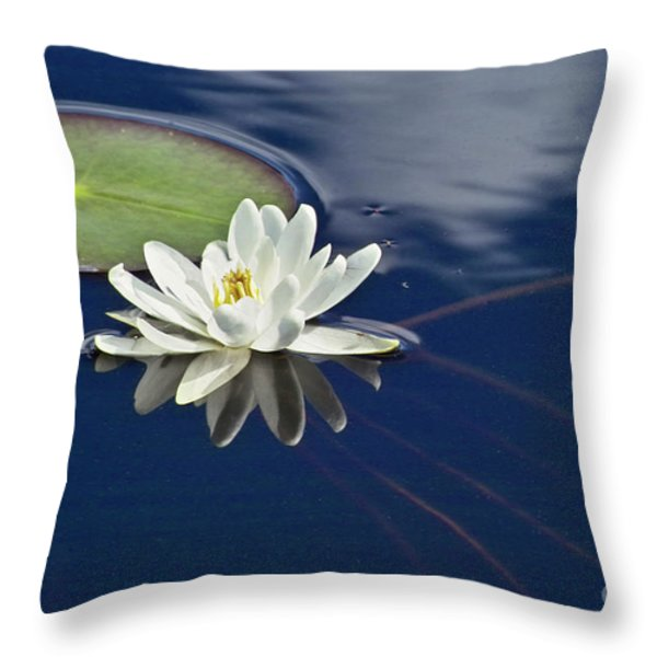 White Water Lily Throw Pillow by Heiko Koehrer-Wagner