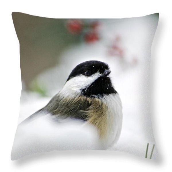 White Winter Chickadee Throw Pillow by Christina Rollo