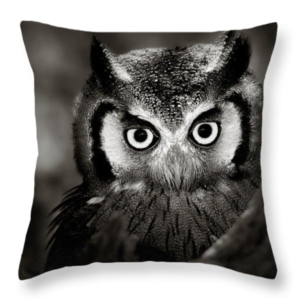 Whitefaced Owl Throw Pillow by Johan Swanepoel