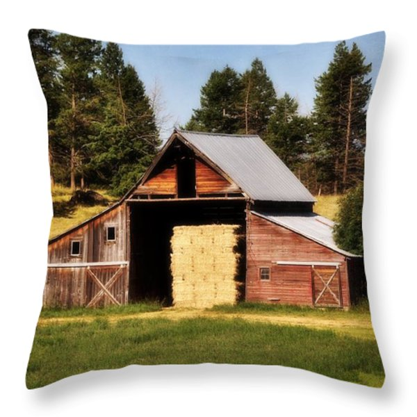 Whitefish Barn Throw Pillow by Marty Koch