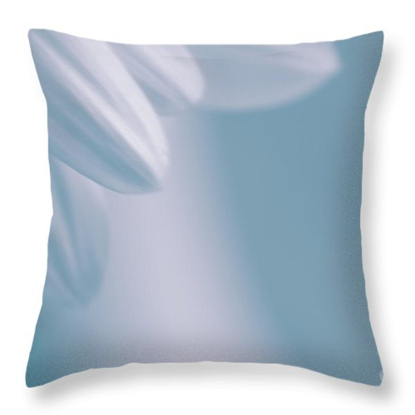 whiteness 02 Throw Pillow by Aimelle
