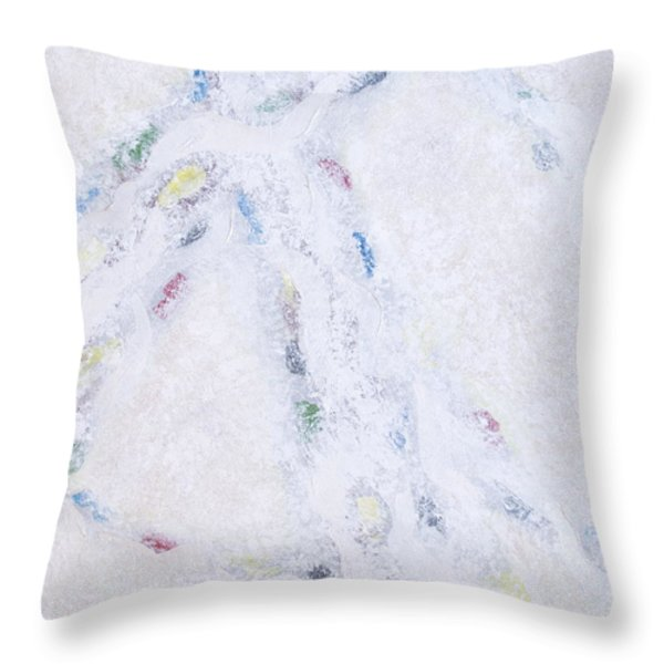 Whiteout Throw Pillow by Cindy Lee Longhini