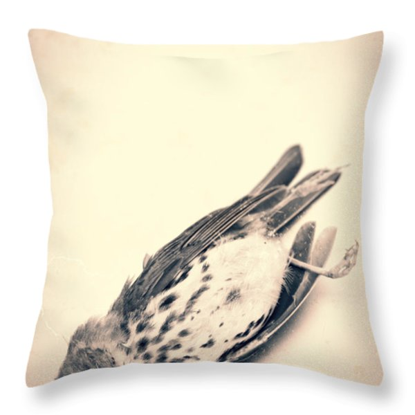 Who Killed Cock Robin Throw Pillow by Edward Fielding