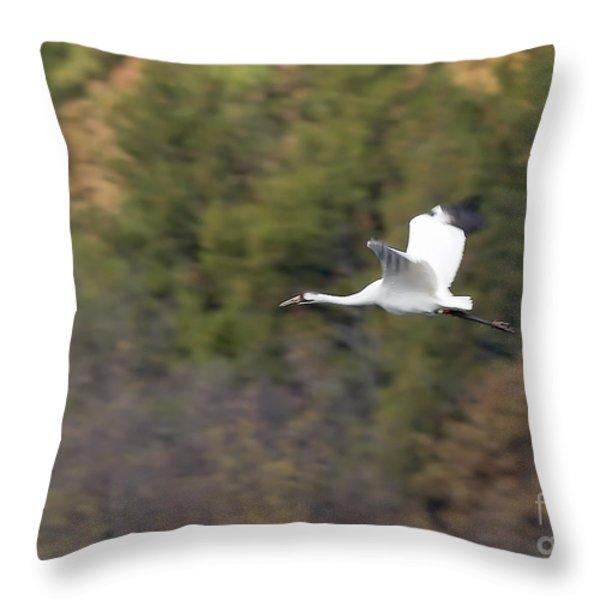 Whooping Crane Throw Pillow by Steven Ralser