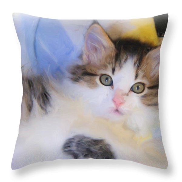 Wide Eyed Kitten Throw Pillow by Kenny Francis