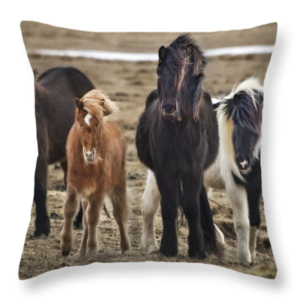 Wild And Free Throw Pillow by Evelina Kremsdorf