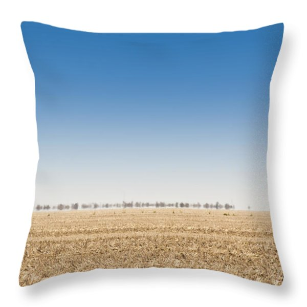 Wild Emus Throw Pillow by Tim Hester