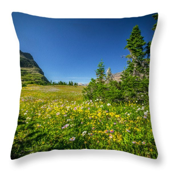 Wild Flowers Glacier National PaintedPark   Throw Pillow by Rich Franco