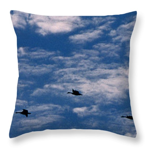 Wild Goose Heaven Throw Pillow by Skip Willits