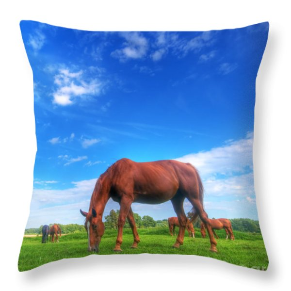 Wild Horse On The Field Throw Pillow by Michal Bednarek