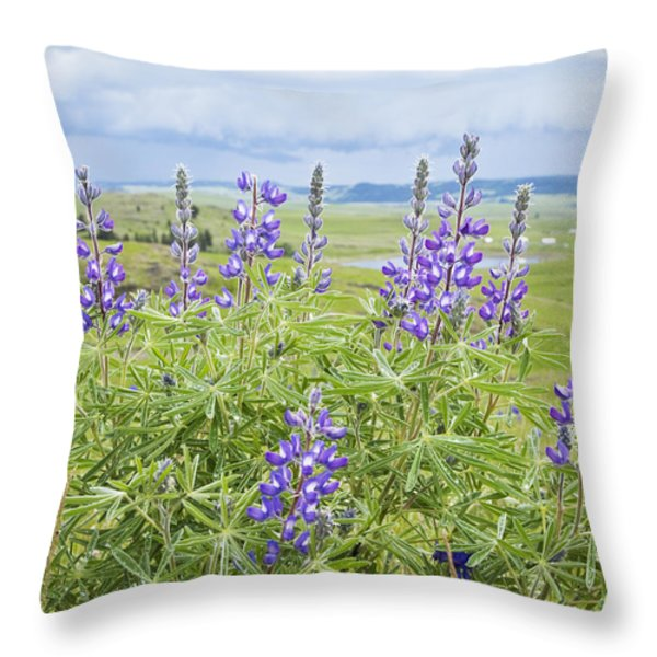 Wild Lupine Throw Pillow by Theresa Tahara