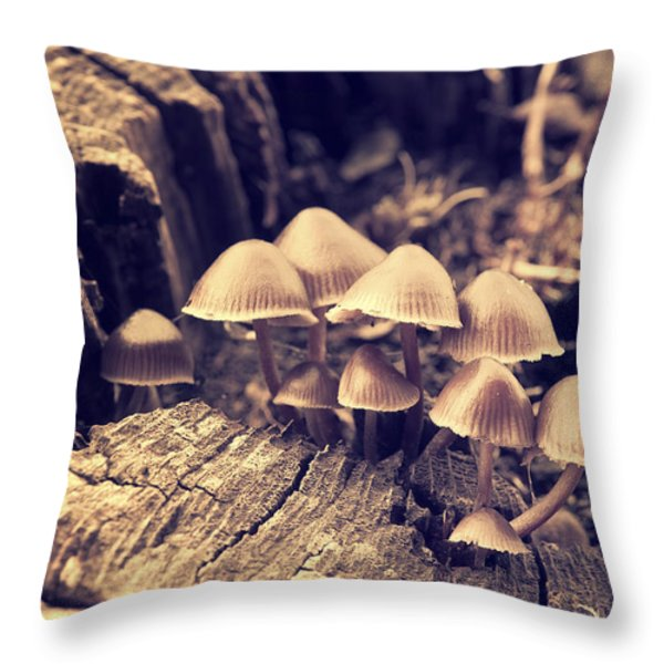 Wild Mushrooms Throw Pillow by Amanda And Christopher Elwell