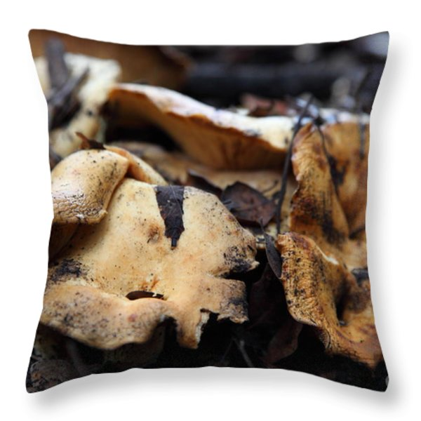 Wild Mushrooms On The Forest Floor - 5D21078 Throw Pillow by Wingsdomain Art and Photography
