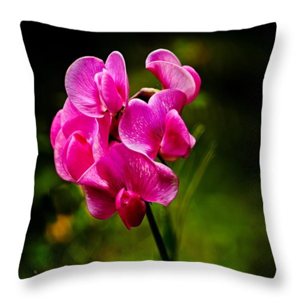 Wild Pea Flower Throw Pillow by Robert Bales