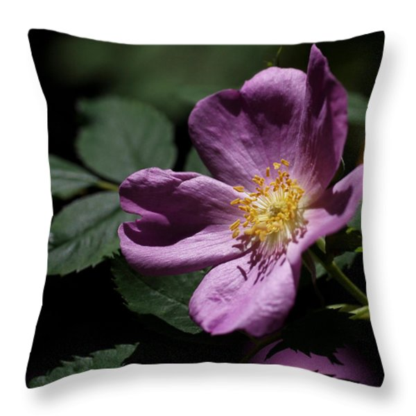 Wild Rose Throw Pillow by Rona Black