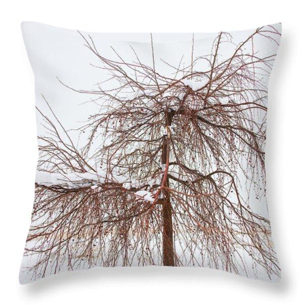 Wild Springtime Winter Tree Throw Pillow by James BO  Insogna