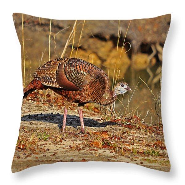Wild Turkey Throw Pillow by Al Powell Photography USA