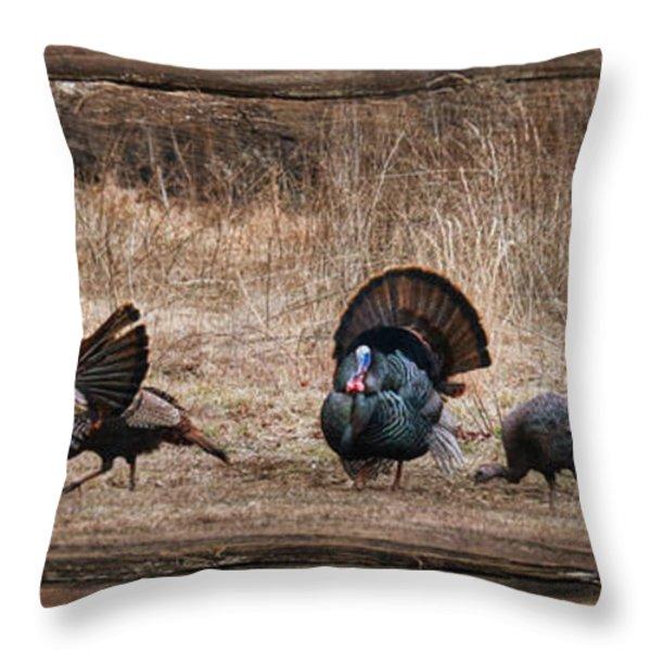 Wild Turkeys Throw Pillow by Lori Deiter