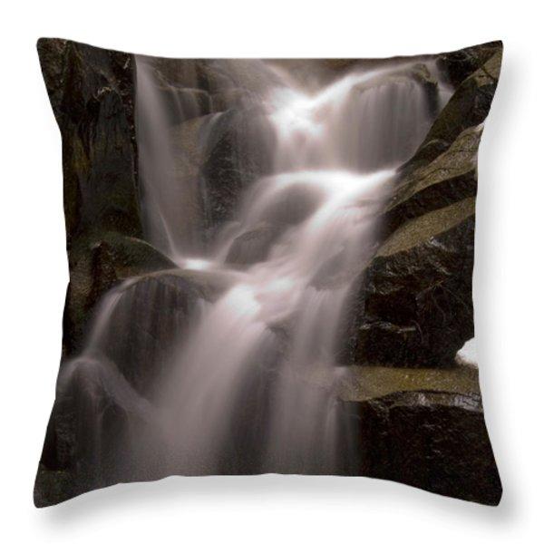 Wildcat Falls Throw Pillow by Bill Gallagher
