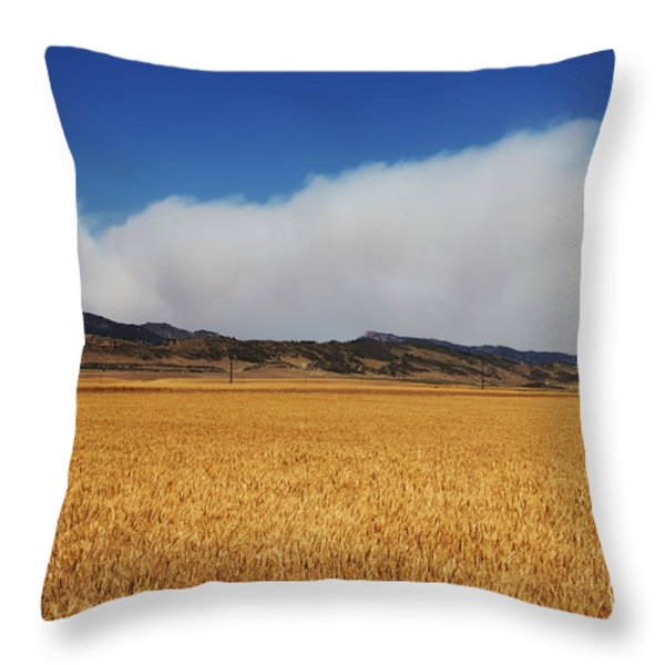 Wildfire Throw Pillow by Jon Burch Photography