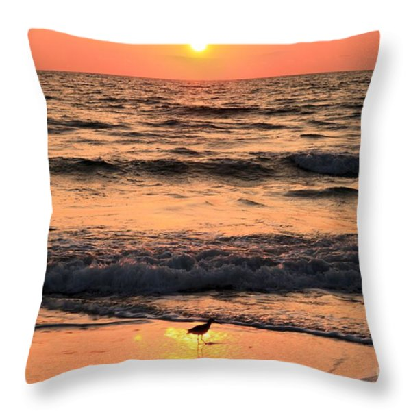 Willet In The Spotlight Throw Pillow by Adam Jewell